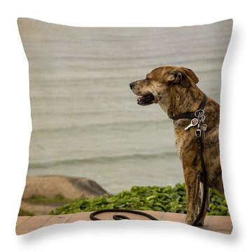 Dog On The Beach Throw Pillow
