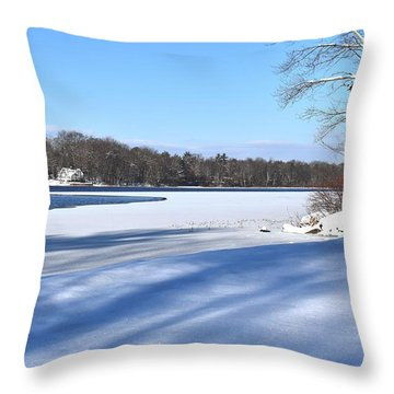Dog Pond In Winter 1 Throw Pillow