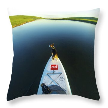 Throw Pillow featuring the photograph Dog Sup  by Will Gudgeon