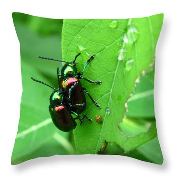 Dogbane Beetles Throw Pillow