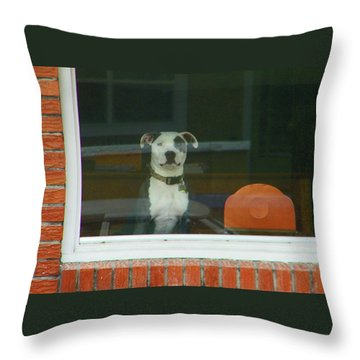 Doggie In The Window Throw Pillow by Lenore Senior