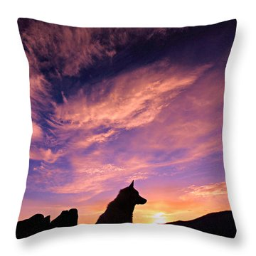 Dogs Dream Too Throw Pillow