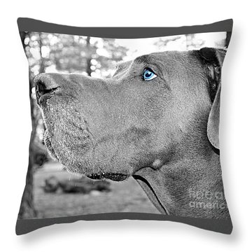 Dogus Throw Pillow