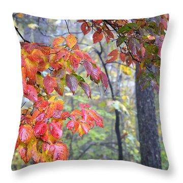 Dogwood 2 Throw Pillow