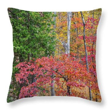Dogwood And Cedar Throw Pillow by Tim Fitzharris