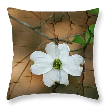 Dogwood Bloom Throw Pillow by Cathy Harper
