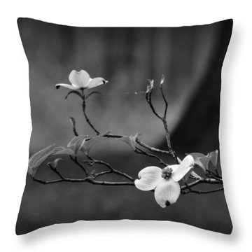 Throw Pillow featuring the photograph Dogwood Branch 001 Bw by Lance Vaughn