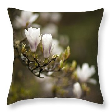 Dogwood Gathering Throw Pillow by Mike Reid