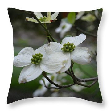 Throw Pillow featuring the photograph Dogwood by Linda Geiger