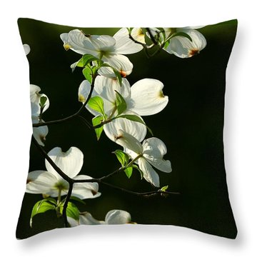 Dogwood Retrospective Throw Pillow