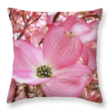 Dogwood Tree 1 Pink Dogwood Flowers Artwork Art Prints Canvas Framed Cards Throw Pillow by Baslee Troutman