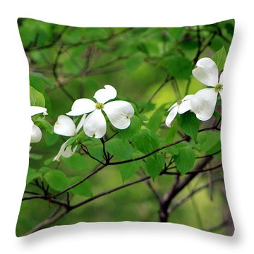 Dogwoods Throw Pillow