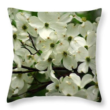 Dogwoods Throw Pillow by Marty Koch