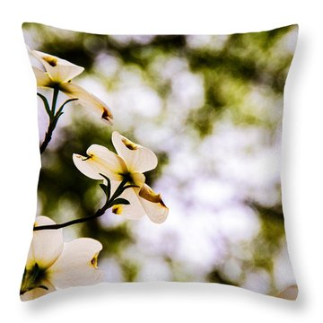 Dogwoods Under The Pines Throw Pillow