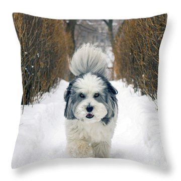 Doing The Dog Walk Throw Pillow by Keith Armstrong