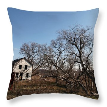 Dollhouse Throw Pillow by Amanda Barcon
