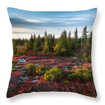 Dolly Sods Wilderness Area West Virginia Throw Pillow by Mark VanDyke
