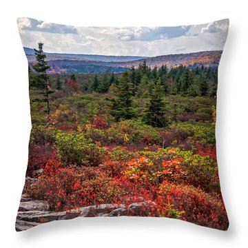 Dolly Sods Wilderness In Autumn 4273 Throw Pillow