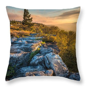 Monongahela National Forset Dolly Sods Wilderness Throw Pillow