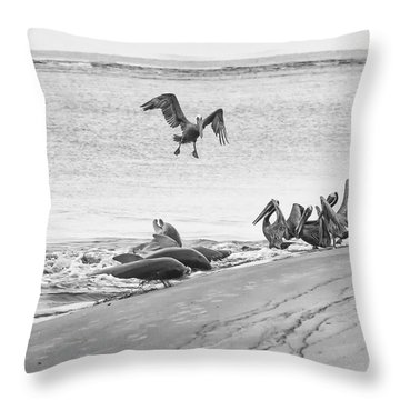 Dolphin And Pelican Party Throw Pillow by Patricia Schaefer