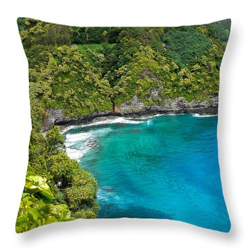 Throw Pillow featuring the photograph Dolphin Cove by Debbie Karnes