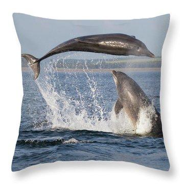Dolphins Having Fun Throw Pillow