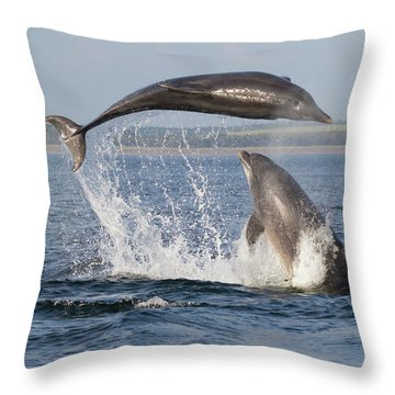 Throw Pillow featuring the photograph Dolphins Having Fun by Karen Van Der Zijden