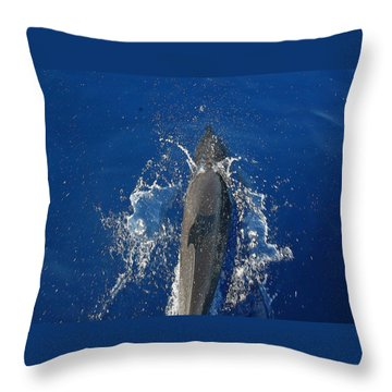 Dolphin Throw Pillow by J R Seymour
