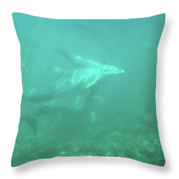 Throw Pillow featuring the photograph Dolphin Swim by Francesca Mackenney