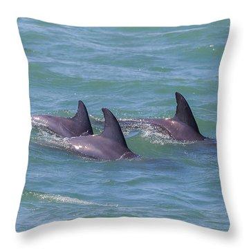 Dolphin Trio Throw Pillow
