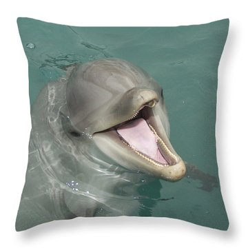 Dolphin Throw Pillow by Sean M