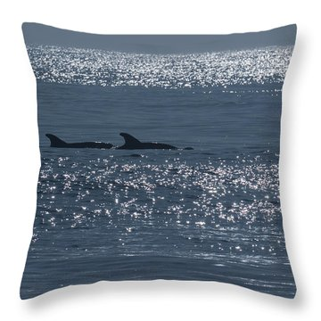 Dolphins And Reflections Throw Pillow