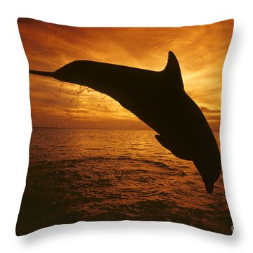 Dolphins And Sunset Throw Pillow by Dave Fleetham - Printscapes
