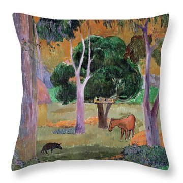 Dominican Landscape Throw Pillow