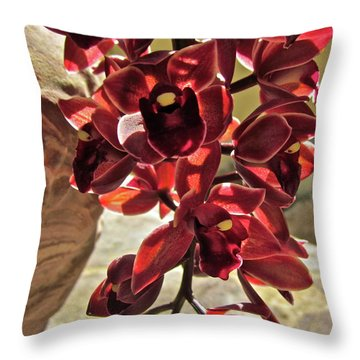 Donatelli Throw Pillow by Gwyn Newcombe