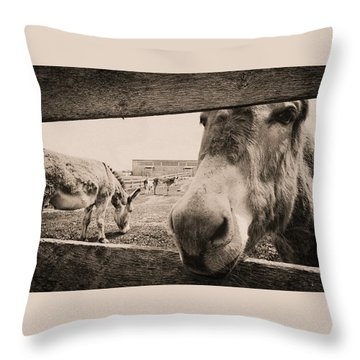Donkey Face Throw Pillow