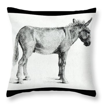 Donkey Throw Pillow by George Stubbs