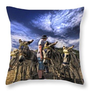 Donkey Rides Throw Pillow
