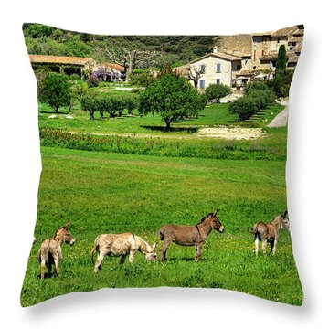 Throw Pillow featuring the photograph Donkeys In Provence by Olivier Le Queinec