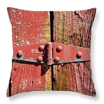 Throw Pillow featuring the photograph Don't Come Unhinged- Fine Art by KayeCee Spain