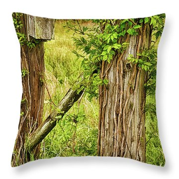 Don't Fence Me In Throw Pillow by Priscilla Burgers