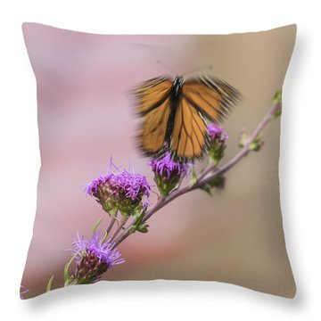 Don't Fly Away Butterfly Throw Pillow