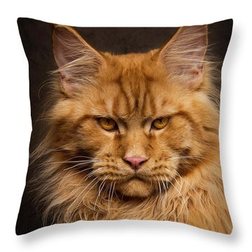 Don't Mess With Me. Throw Pillow