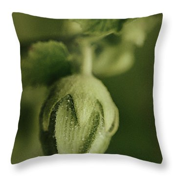 Don't Really Know.... Throw Pillow