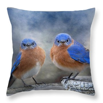 Throw Pillow featuring the photograph Don't Ruffle My Feathers by Bonnie Barry