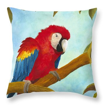 Dont Ruffle My Feathers Throw Pillow