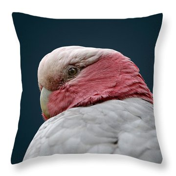 Don't Sneak Up On Me Throw Pillow