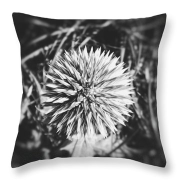 Throw Pillow featuring the photograph Don't Touch Me by Karen Stahlros