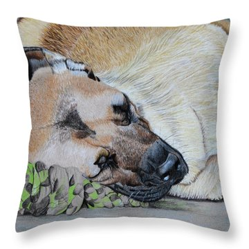 Dont Touch My Toy Throw Pillow