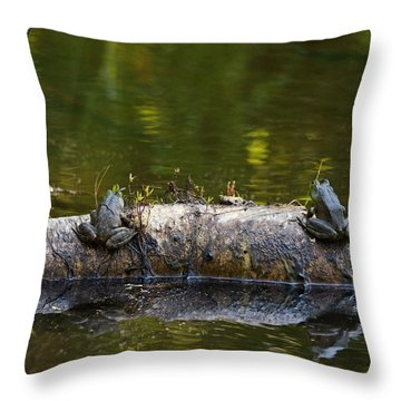 Don't You Love Mornings Like This Throw Pillow by Susan Capuano